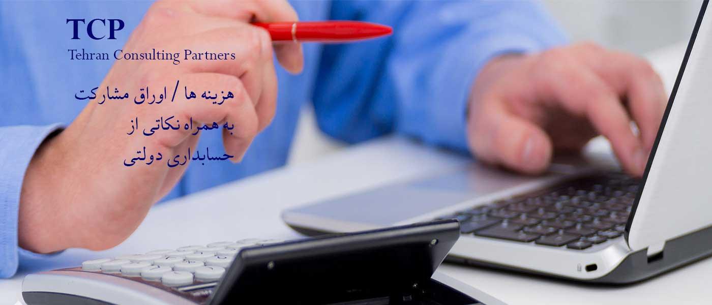 حسابداری-دولتی-خدمات-مالی-و-مالیاتی-TCP-تی-سی-پی
